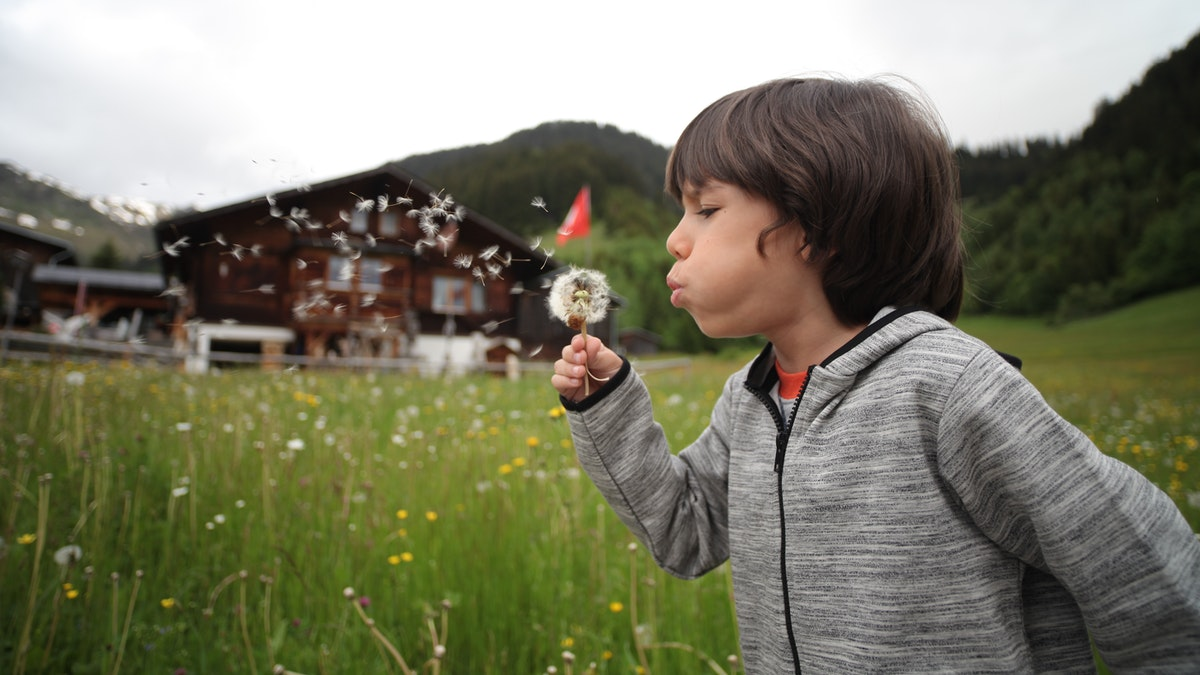 Home Schooling Answers Outdoor Classroom